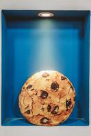 chocolate-chip-cookie-cookie-delicious-1848973